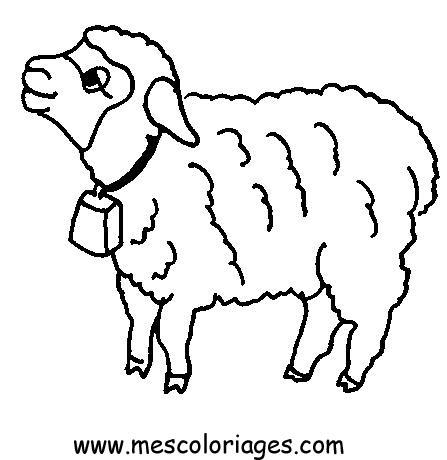 Coloriage Mouton 16 Coloriage En Ligne Gratuit Pour Enfant