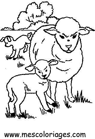 Coloriage mouton 29 coloriage en ligne gratuit pour enfant - Mouton en dessin ...