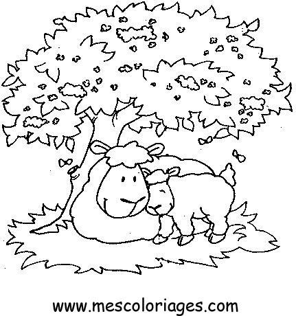 coloriage mouton 49 coloriage en ligne gratuit pour enfant. Black Bedroom Furniture Sets. Home Design Ideas