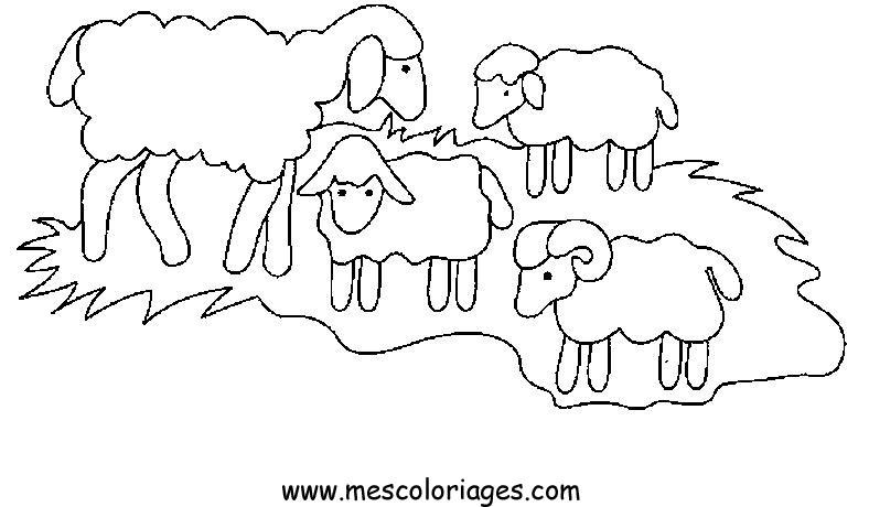 Coloriage mouton 56 coloriage en ligne gratuit pour enfant - Coloriage en ligne enfant ...